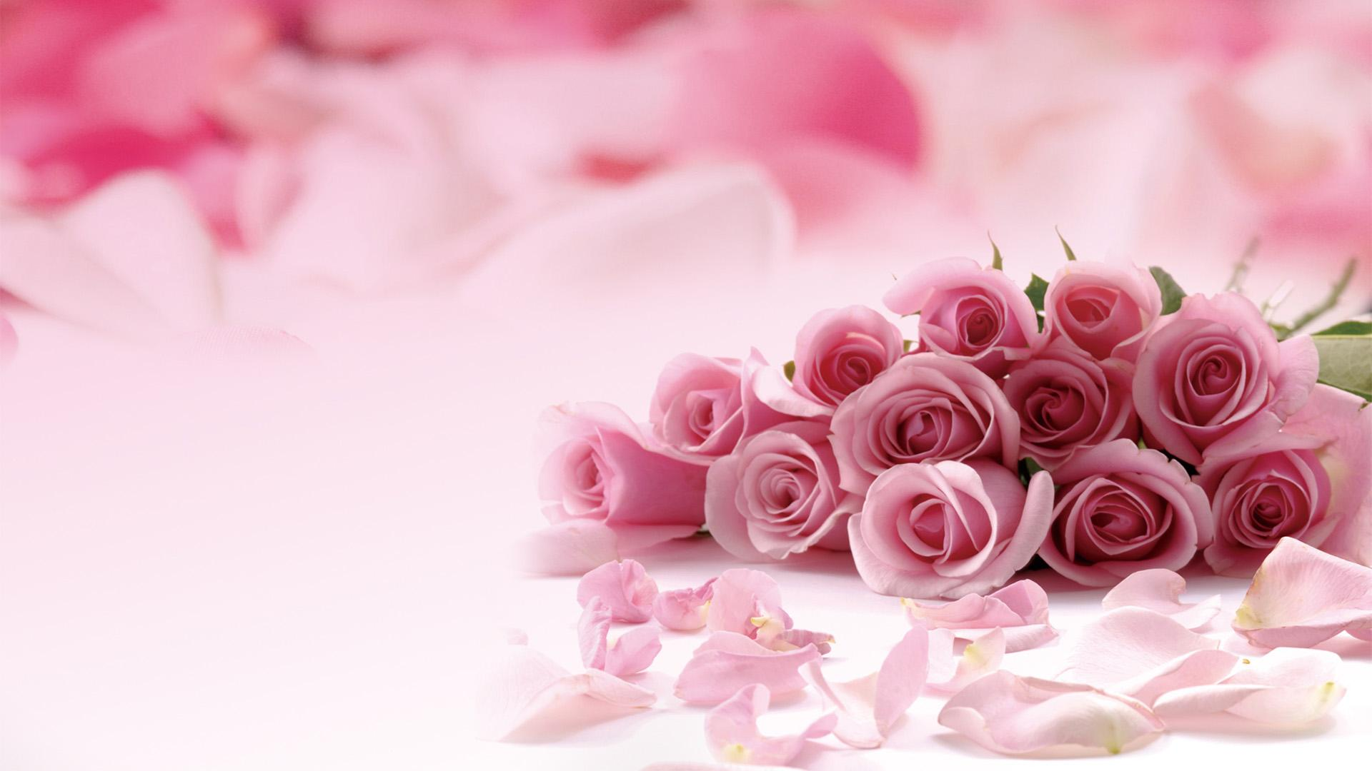 Pink Rose Desktop Wallpapers Group (78+)