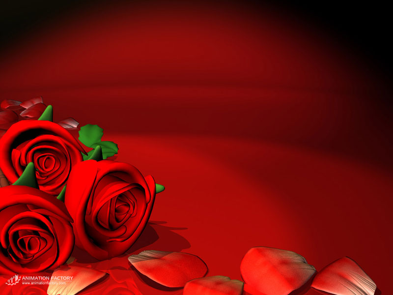 35+ Roses Background Wallpaper, HD Roses Wallpapers and Photos