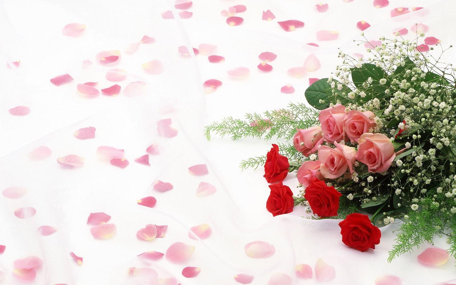 Background Roses Wallpaper Sf Wallpaper