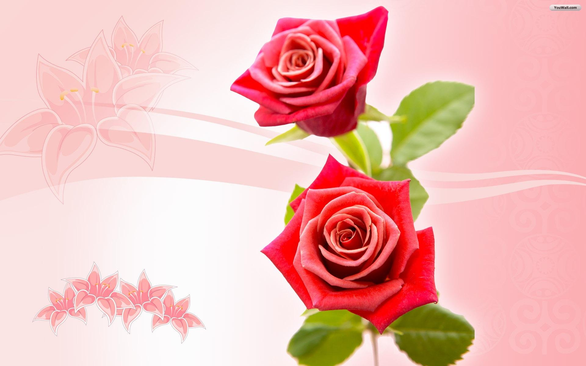 Background Roses Wallpaper