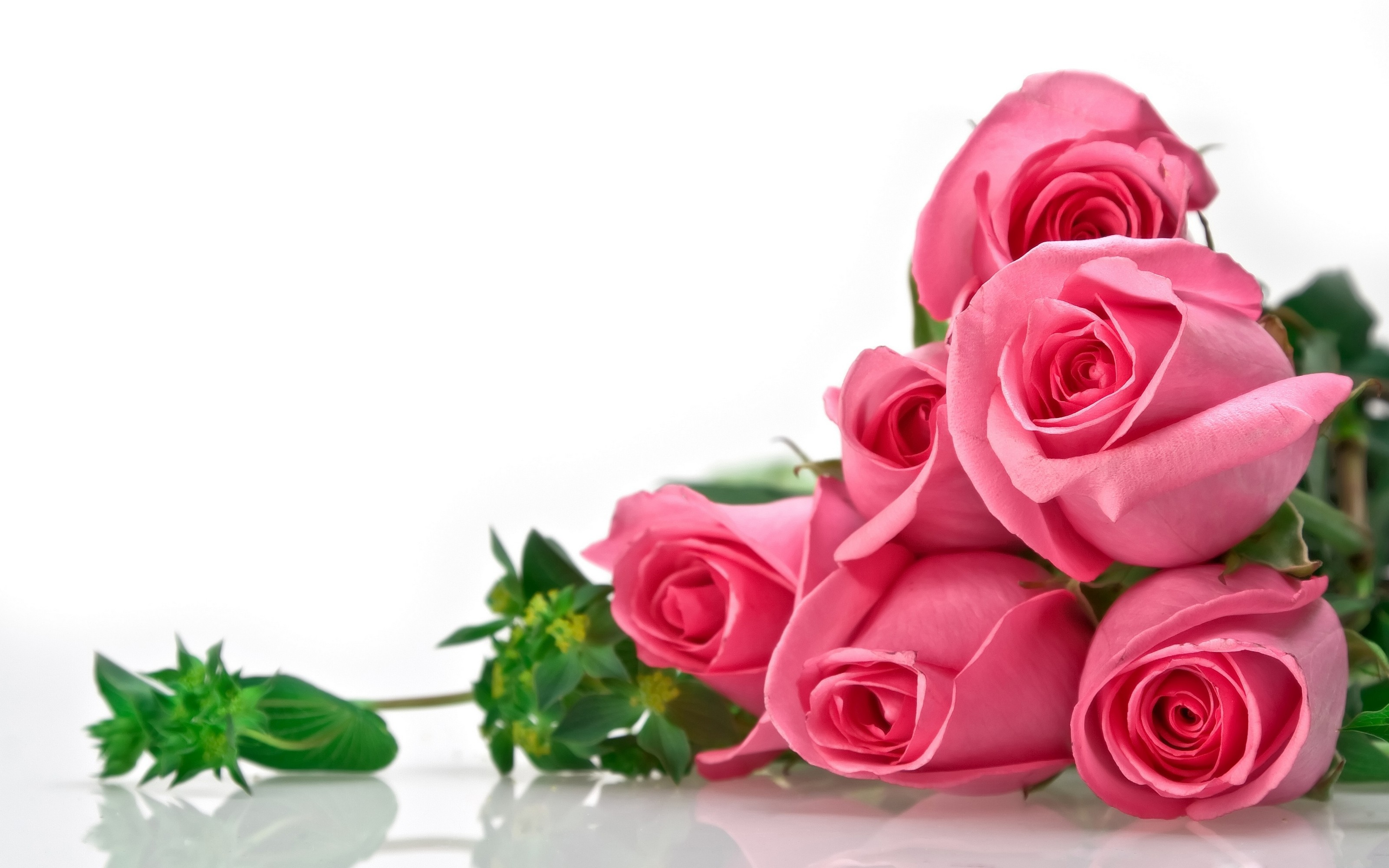 35 Roses Background Wallpaper HD Wallpapers And Photos