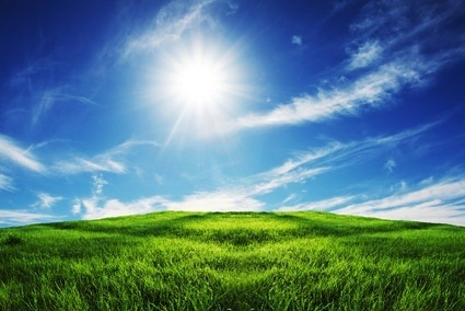 Grass and the sky background free stock photos download (23,716