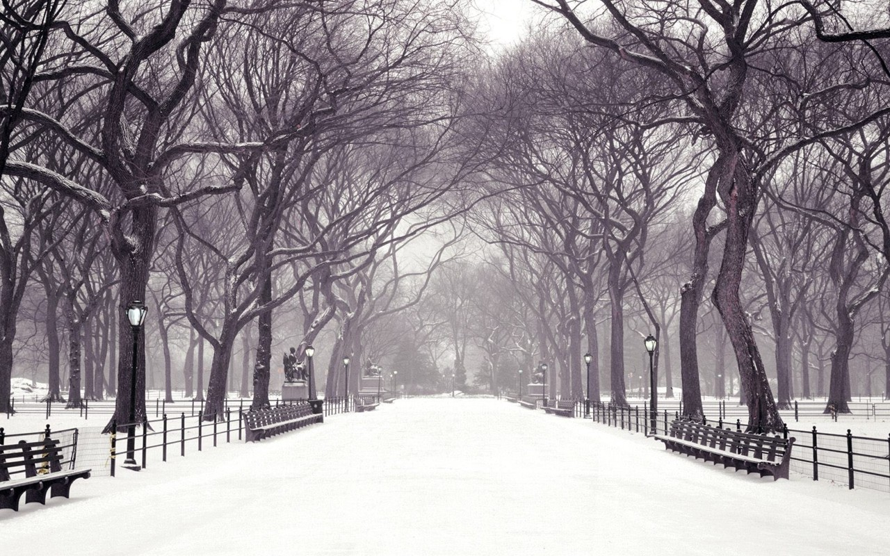 2401 Winter HD Wallpapers | Backgrounds - Wallpaper Abyss