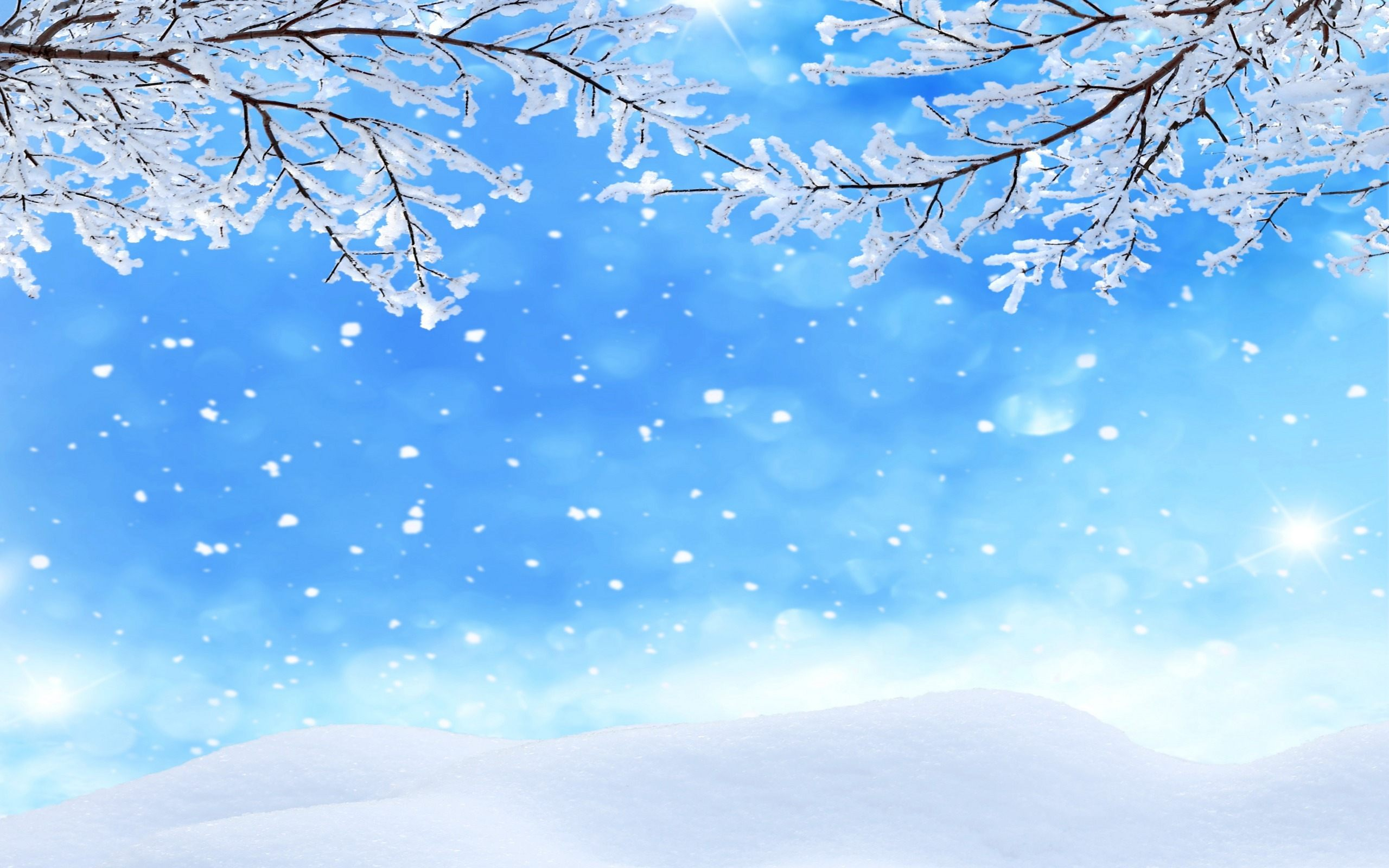 Winter Background Snowflakes Wallpaper HD Free Download