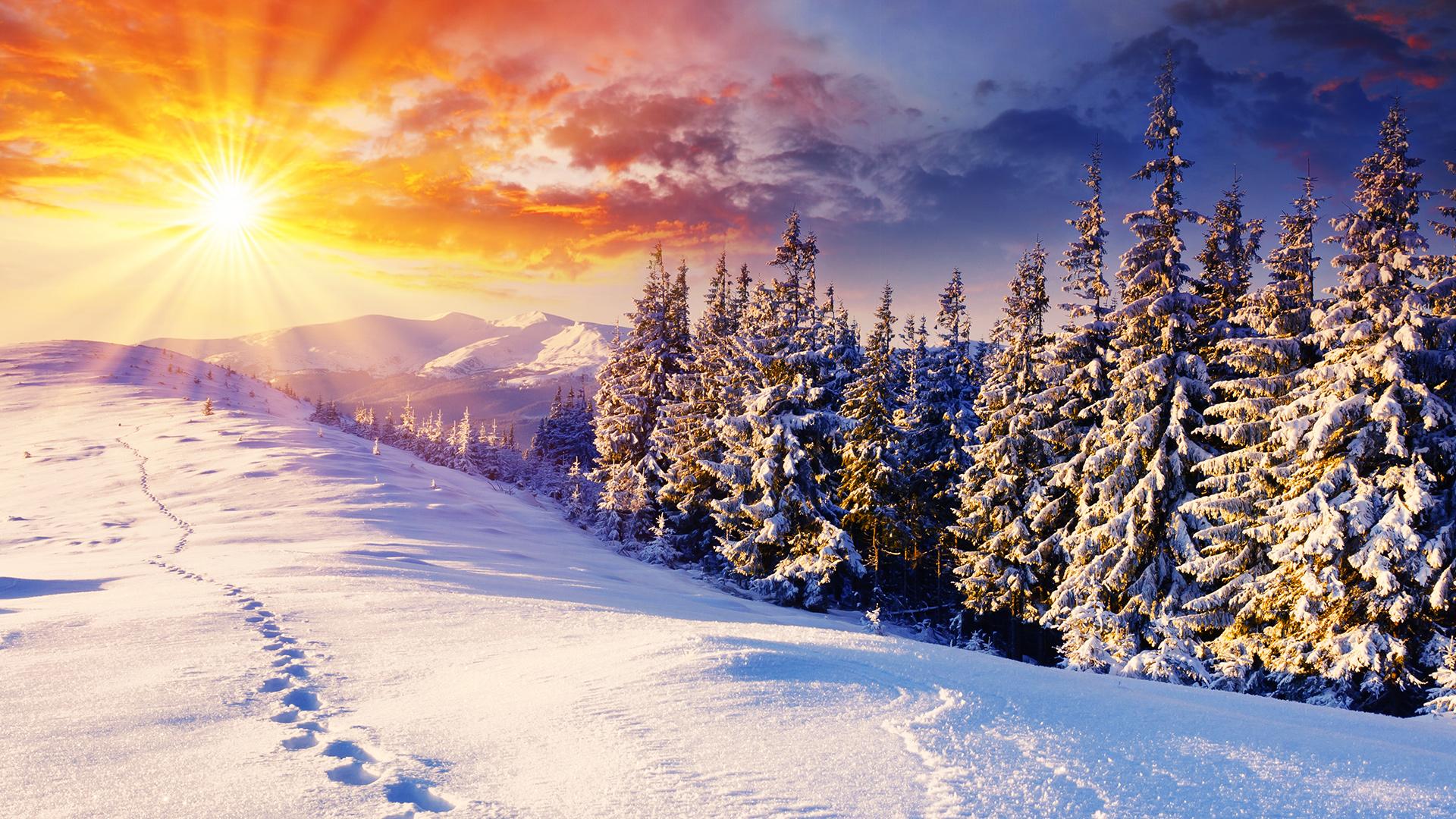 Winter Backgrounds wallpaper | 1920x1080 | #51262