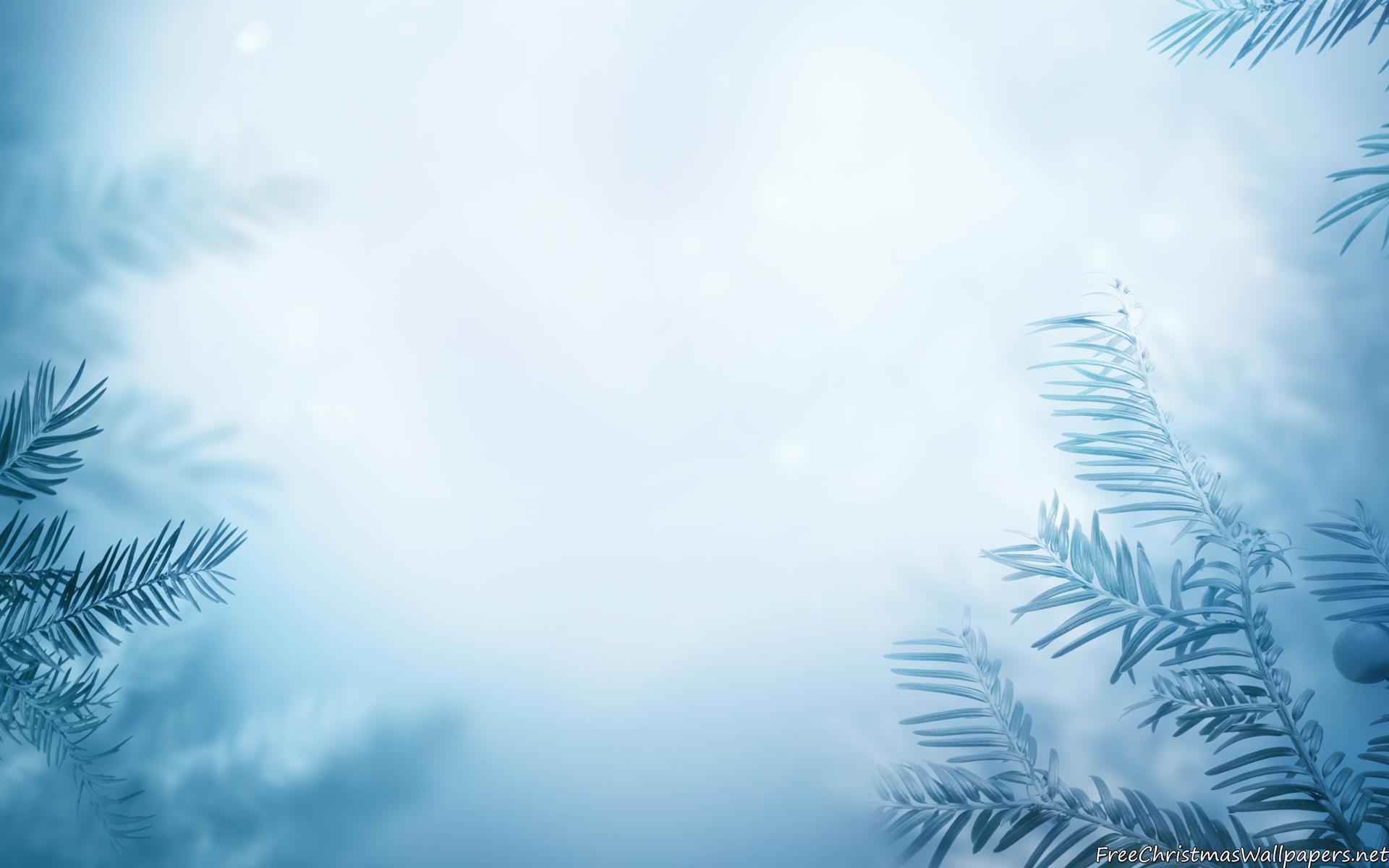 Winter Background wallpaper | 1920x1200 | #81016