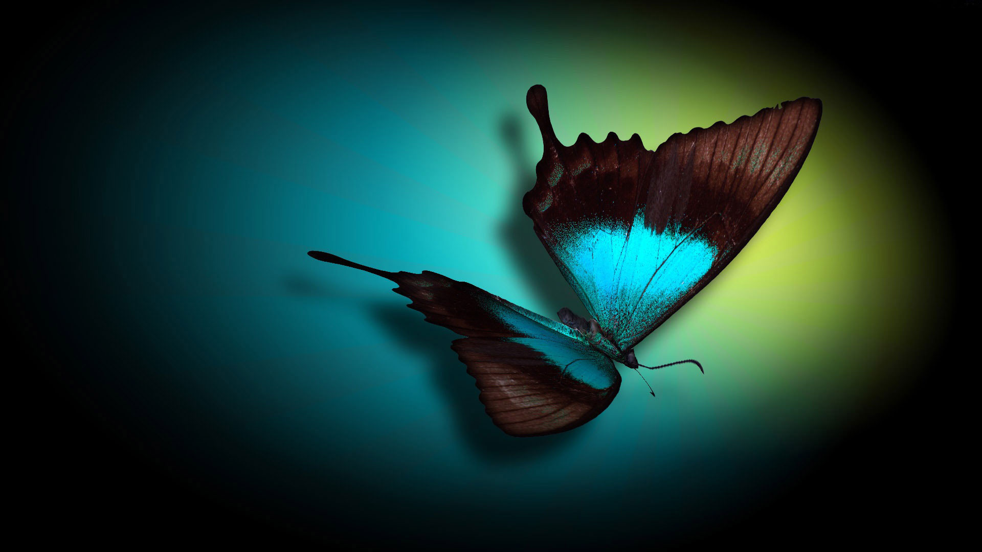 Download Desktop Nightfly Computers Computer Backgrounds Wallpaper