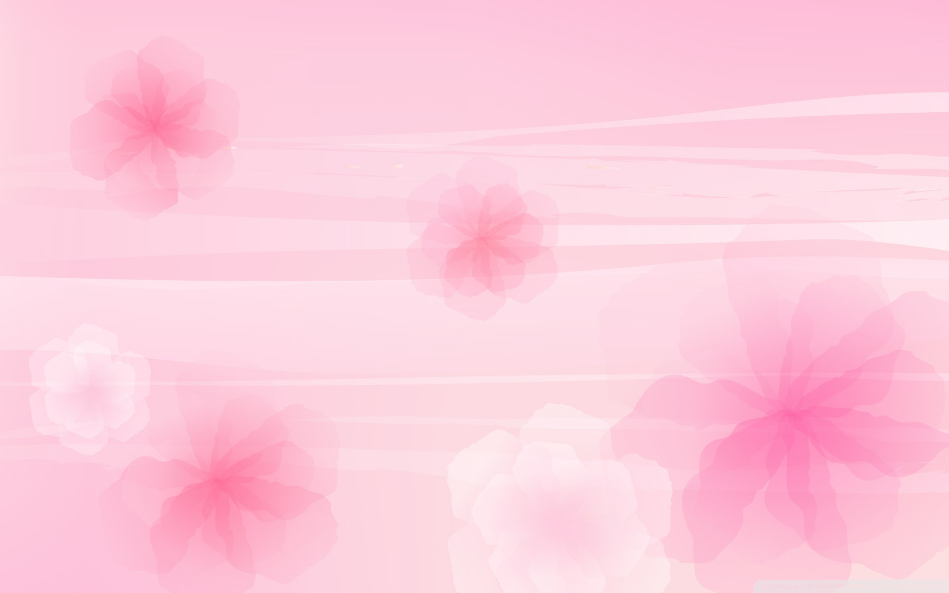 Light Pink Background Wallpapers Babangrichie Org