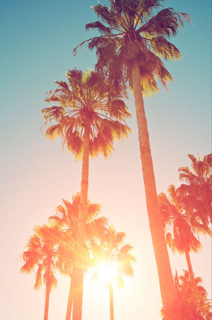 1000 Ideas About Summer Backgrounds On Pinterest
