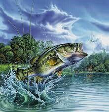 ... Fishing Wallpaper Background ... src