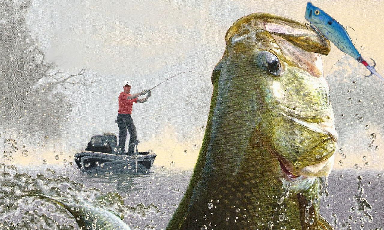 Bass Fishing Wallpaper HD