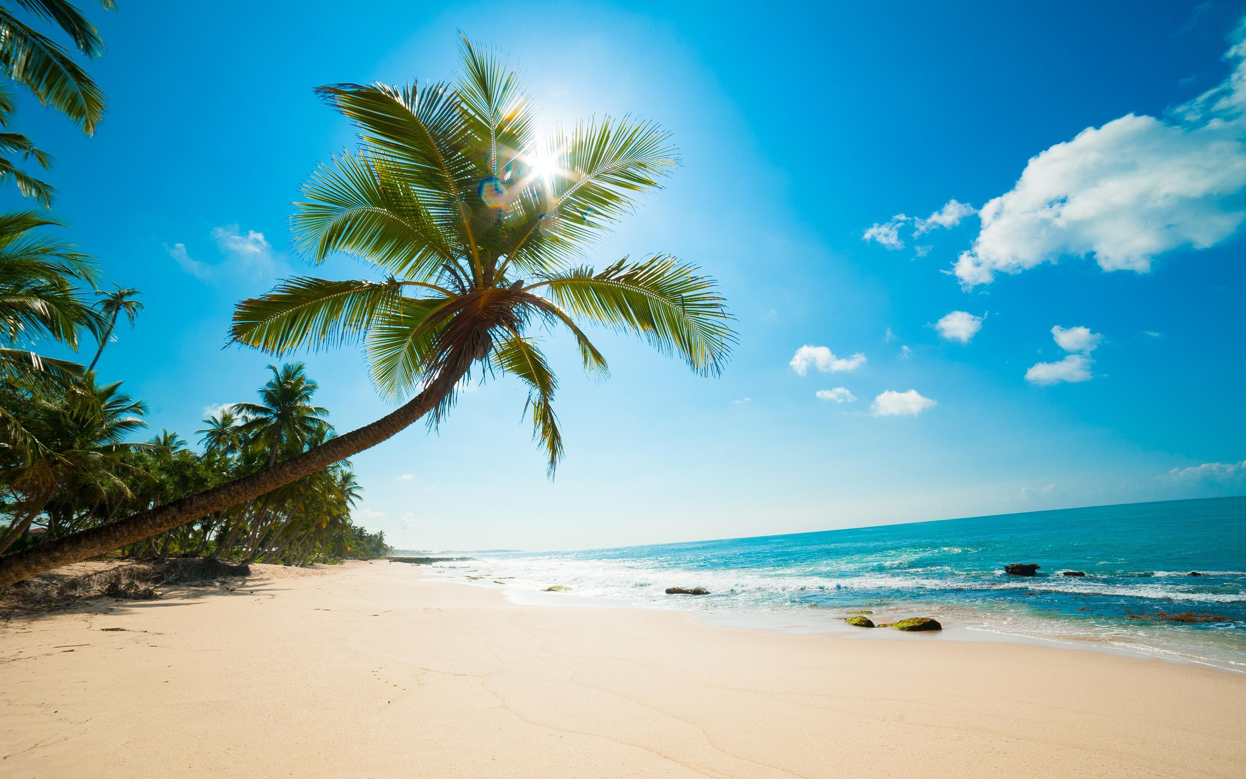 Collection of Beach Background Hd on HDWallpapers