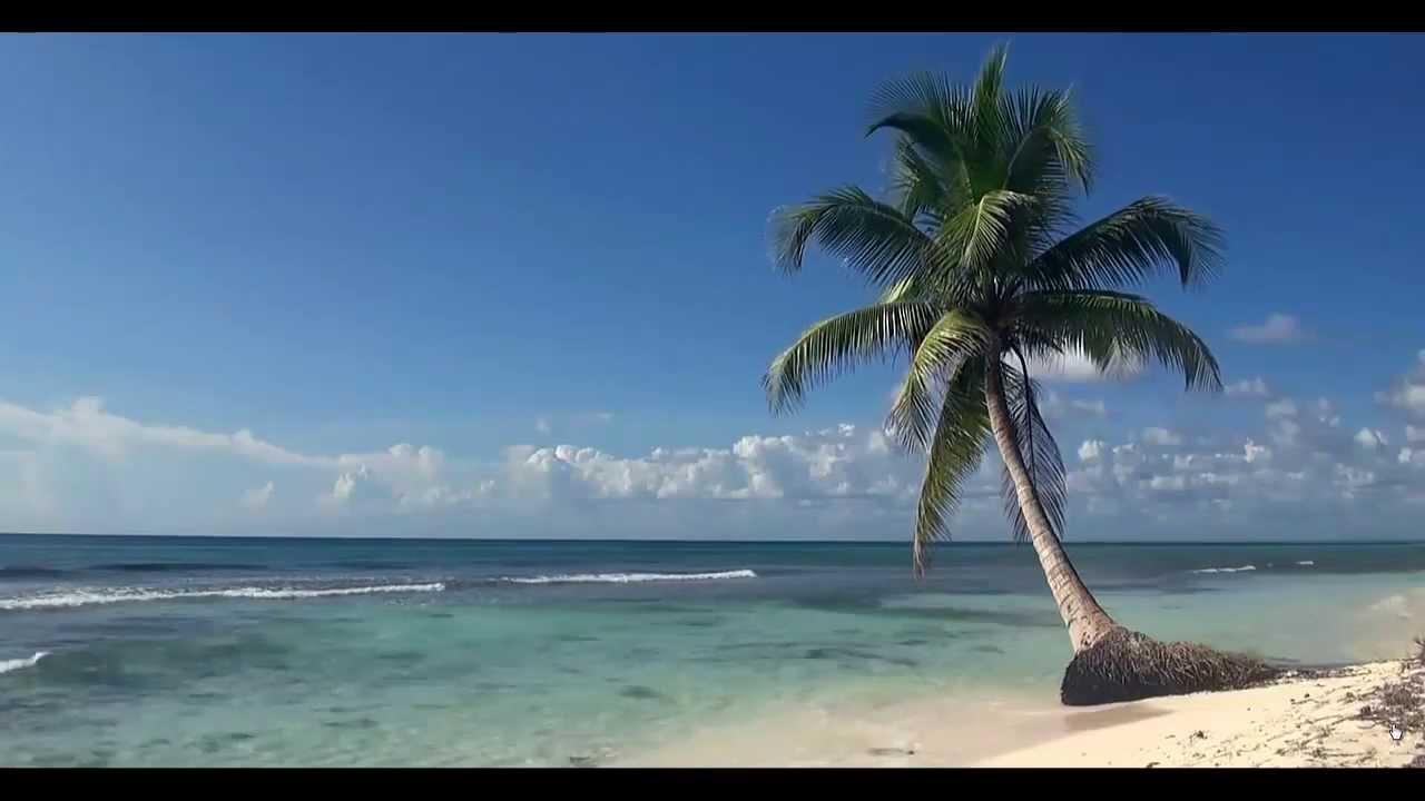 Beach Background - YouTube