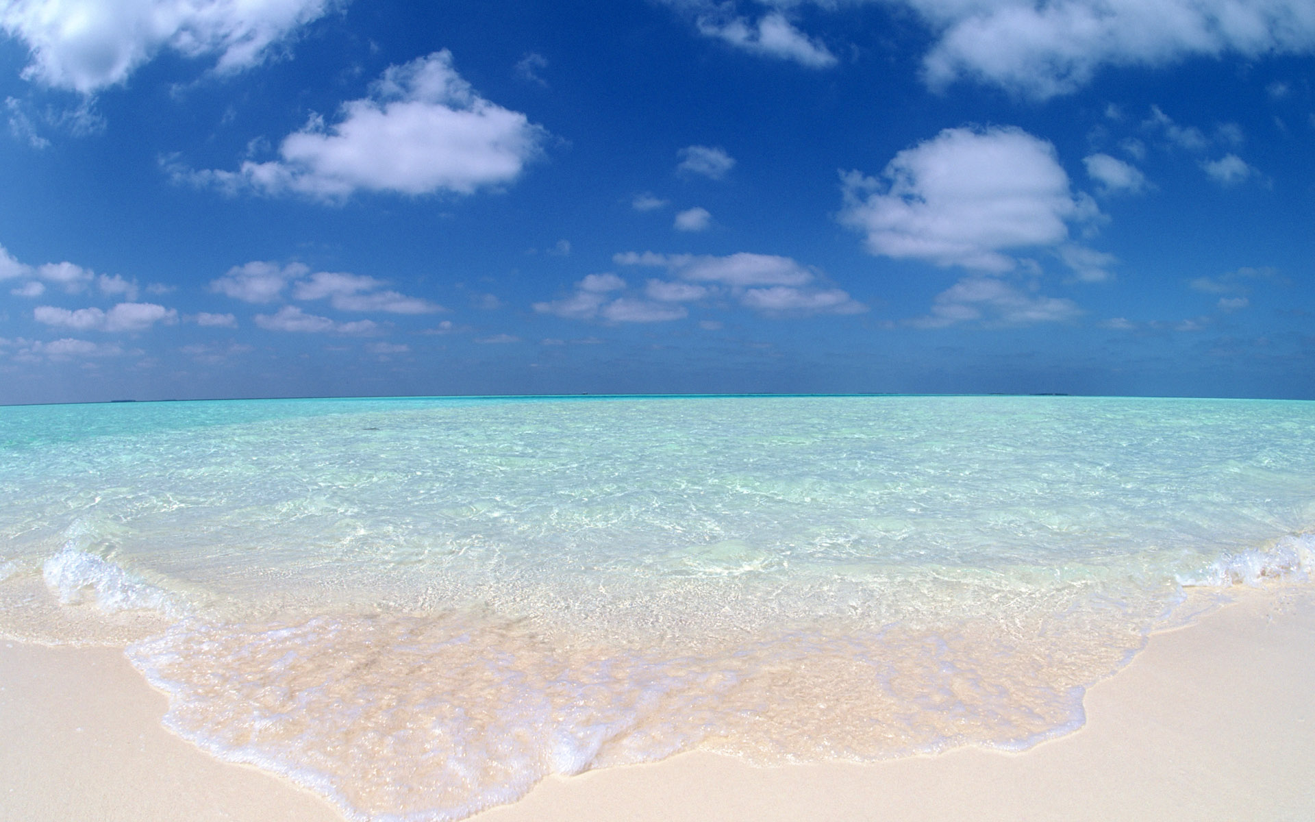 Beach Background Wallpaper - WallpaperSafari