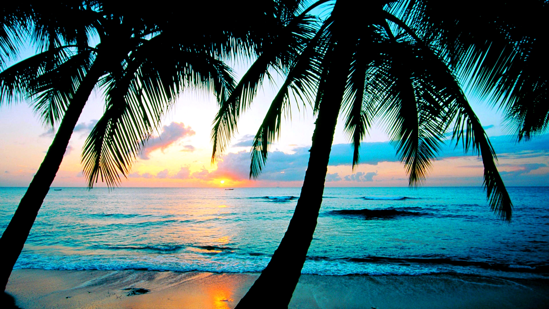 Beach Backgrounds for Wallpaper - WallpaperSafari