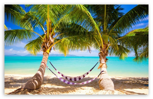 Tropical Beach Hammock HD desktop wallpaper : Widescreen : High