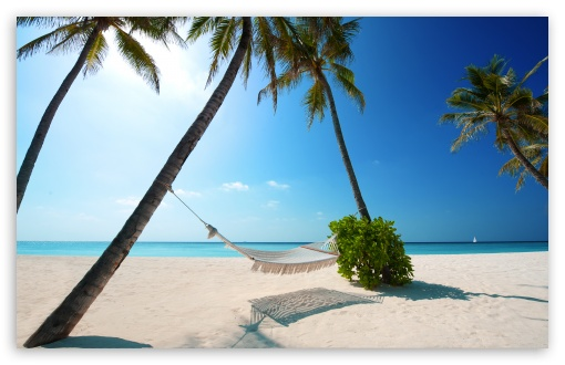 Hammock On Tropical Beach HD desktop wallpaper : High Definition