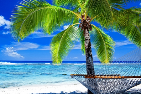 Beach hammock - Beaches & Nature Background Wallpapers on Desktop