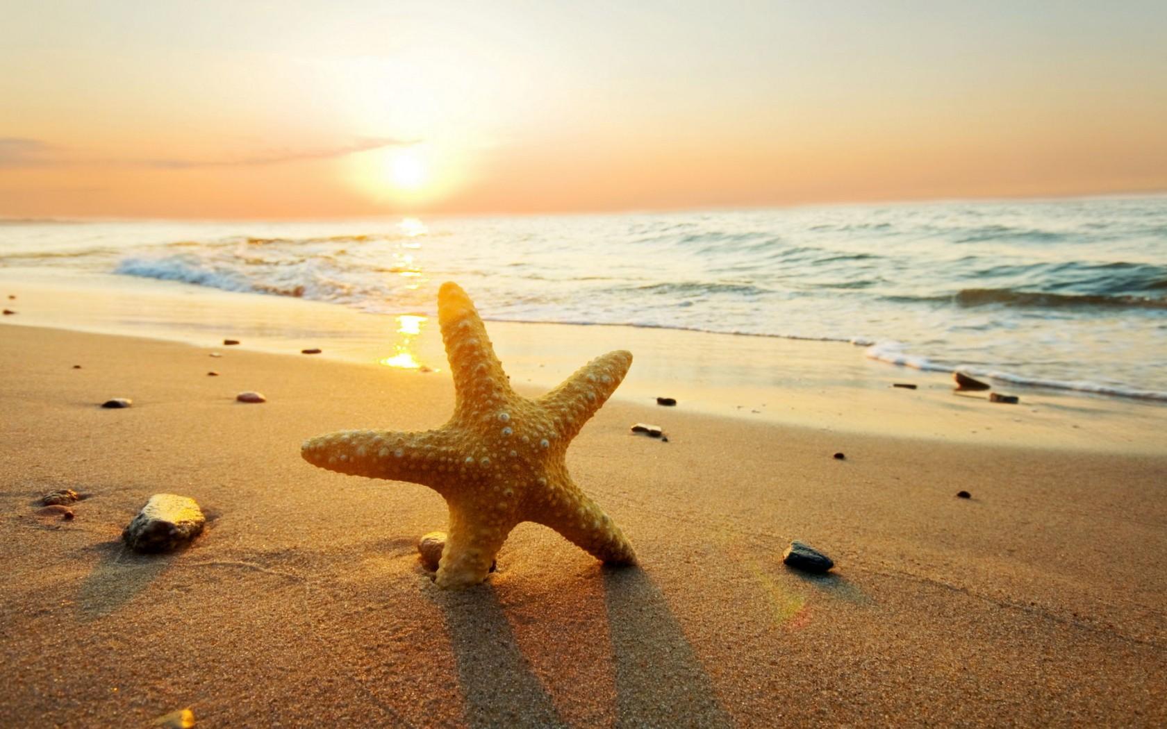 Beach Sunset Wallpaper Desktop Theme 20766