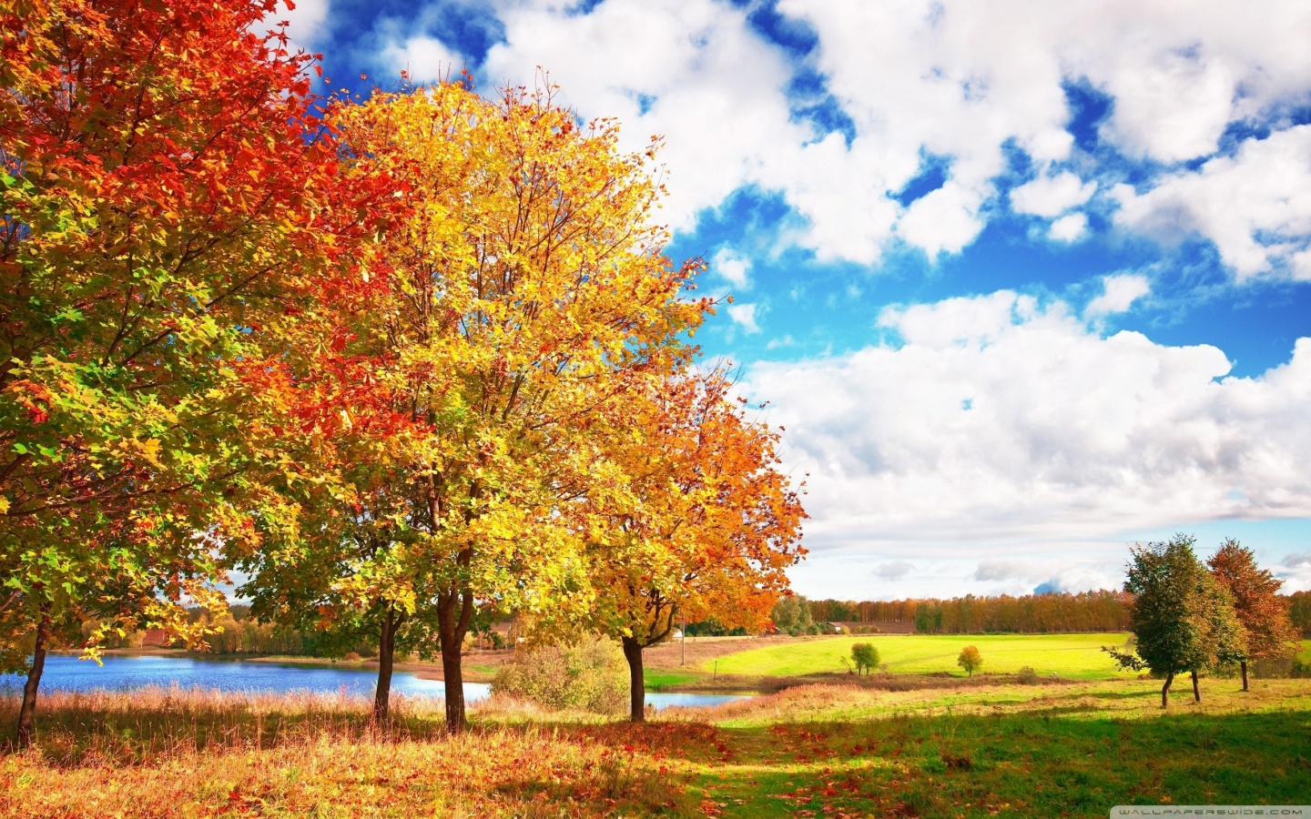 Beautiful Autumn Wallpapers Sf Wallpaper