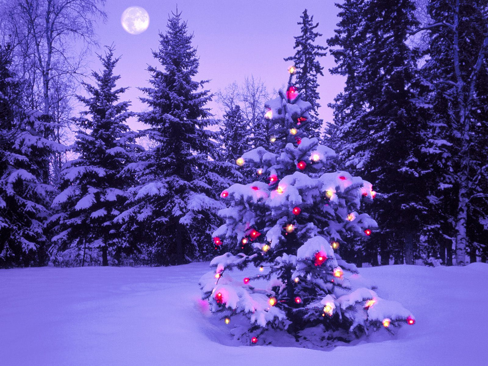 27 Beautiful Christmas And Winter Wallpapers   Merry Christmas