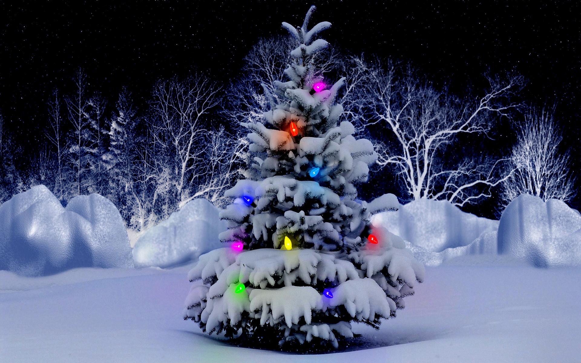 Beautiful Christmas Desktop Backgrounds Group (70+)