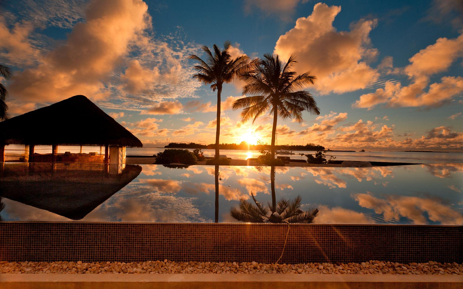 Backgrounds Sunset At Palm Beach Nature Beautiful Desktop