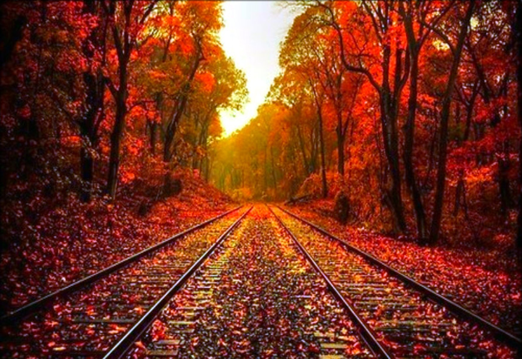 Beautiful Fall Pictures Wallpaper - WallpaperSafari
