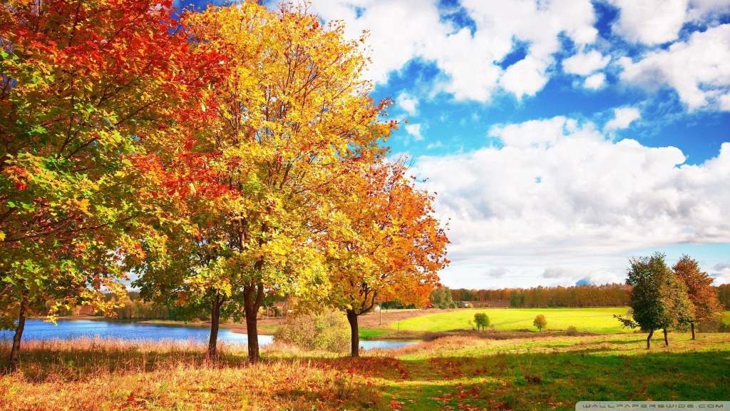 Beautiful Autumn Day HD desktop wallpaper : Mobile : Dual Monitor