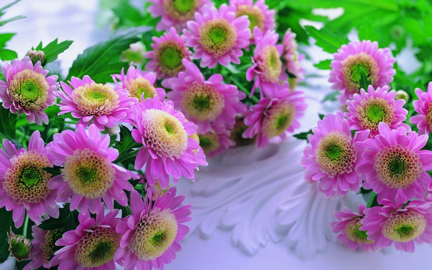 Beautiful Flowers Wallpapers For Desktop HD Group (78+)