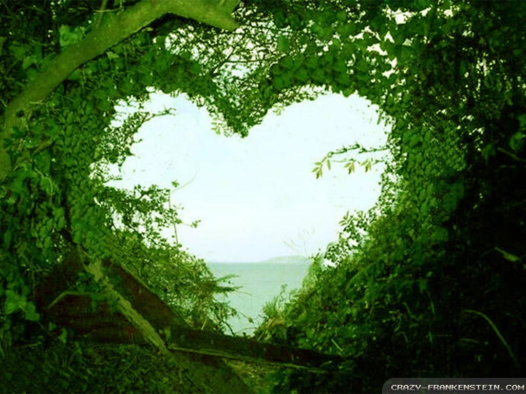 Download Beautiful Love Nature Wallpaper | Full HD Wallpapers