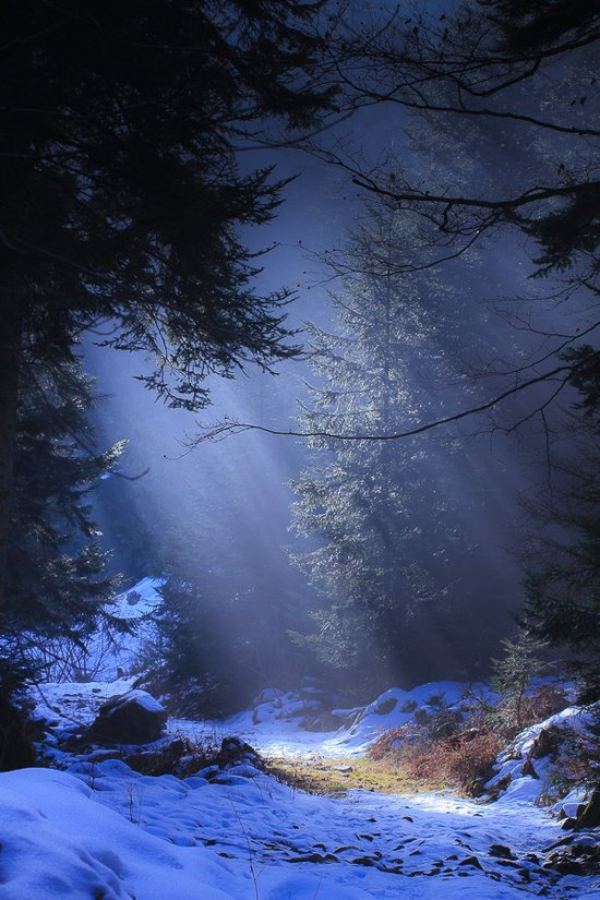 30 Most Beautiful Nature Photography