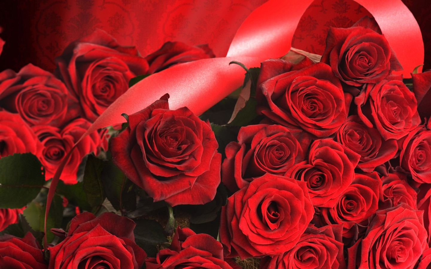 Beautiful Red Roses widescreen wallpaper | Wide-Wallpapers NET