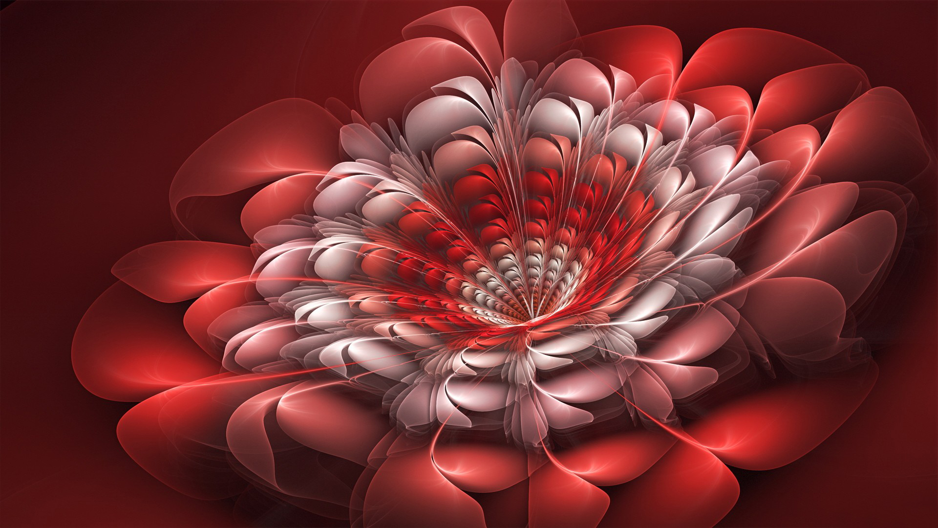 Download Beautiful Red Flower D Abstract S Wallpaper | Full HD