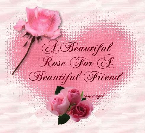 A Beautiful Rose For A Beautiful Friend Pictures, Photos, and