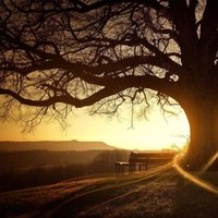 Beautiful Scenery Pictures, Images & Photos | Photobucket