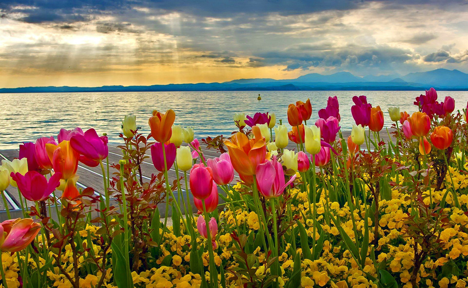 Beautiful Spring images download | PixelsTalk Net
