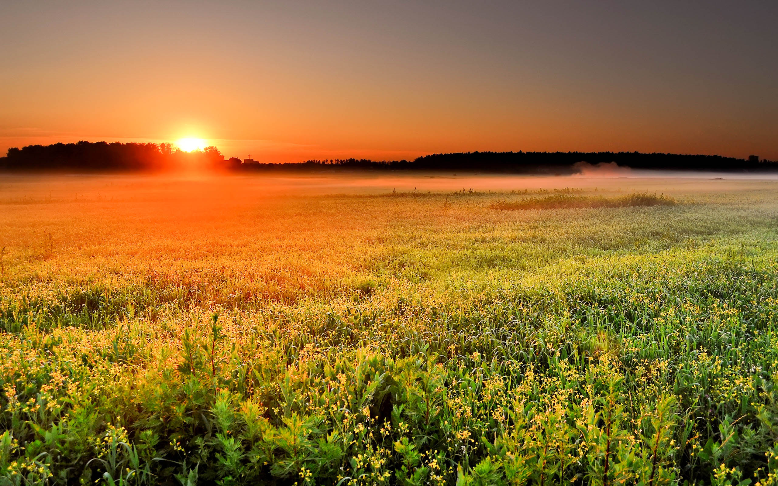 Beautiful Sunrise Wallpapers 2015 (High Definition) - All HD