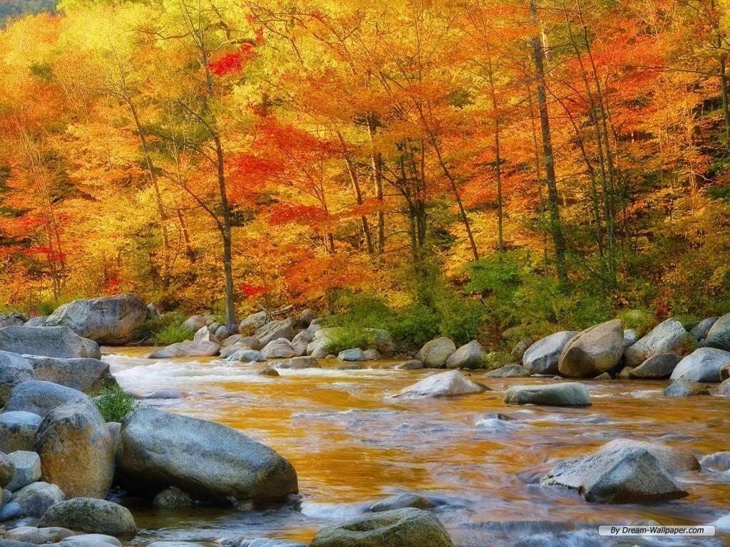 beautiful wallpapers of nature for desktop free download - sf wallpaper