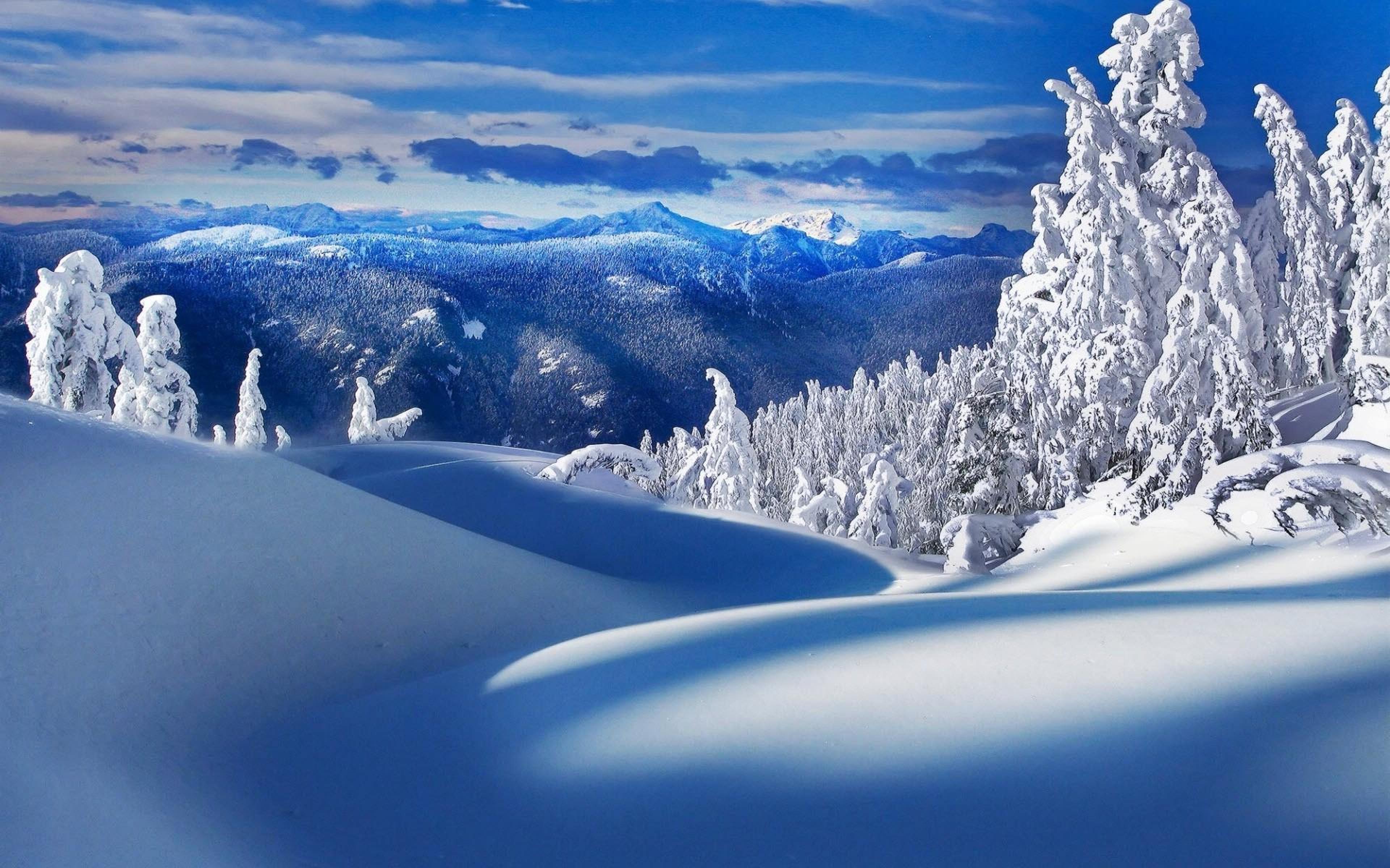 beautiful winter scenery wallpaper - sf wallpaper