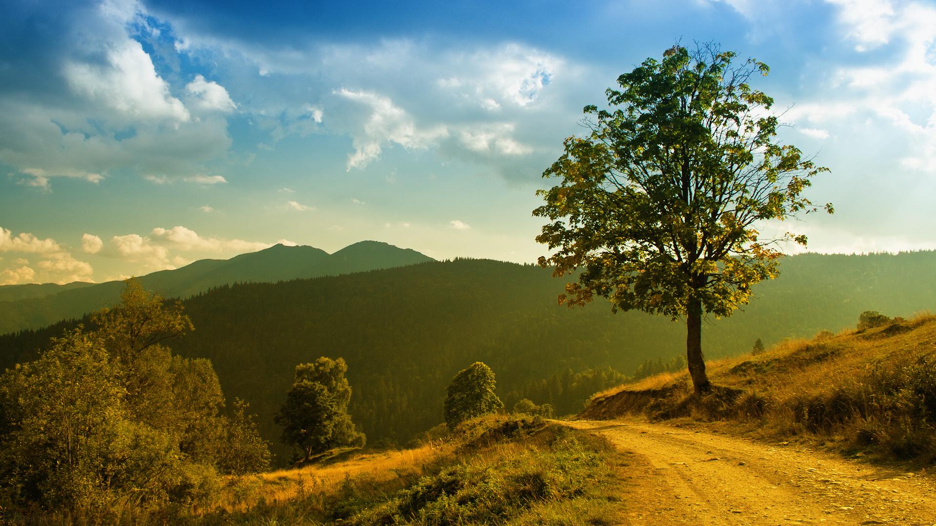 Good Nature Images Download | Full HD Wallpaper