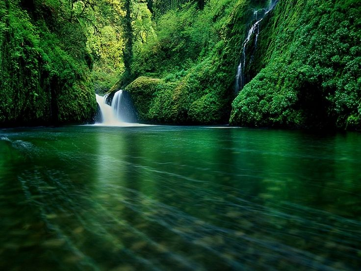 17 Best images about COMPUTER WALLPAPERS on Pinterest | Nature