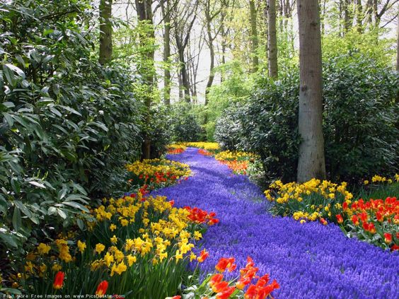 Bing Free Spring Wallpaper | Nature Springtime Free Desktop