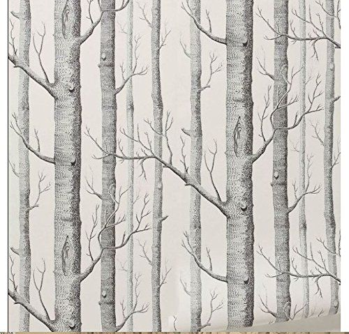 Modern Birch Tree Wallpaper Non Woven Wall Paper Black&White