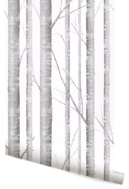 Birch Tree Wallpaper, 2'x4' - Traditional - Wallpaper - by Simple