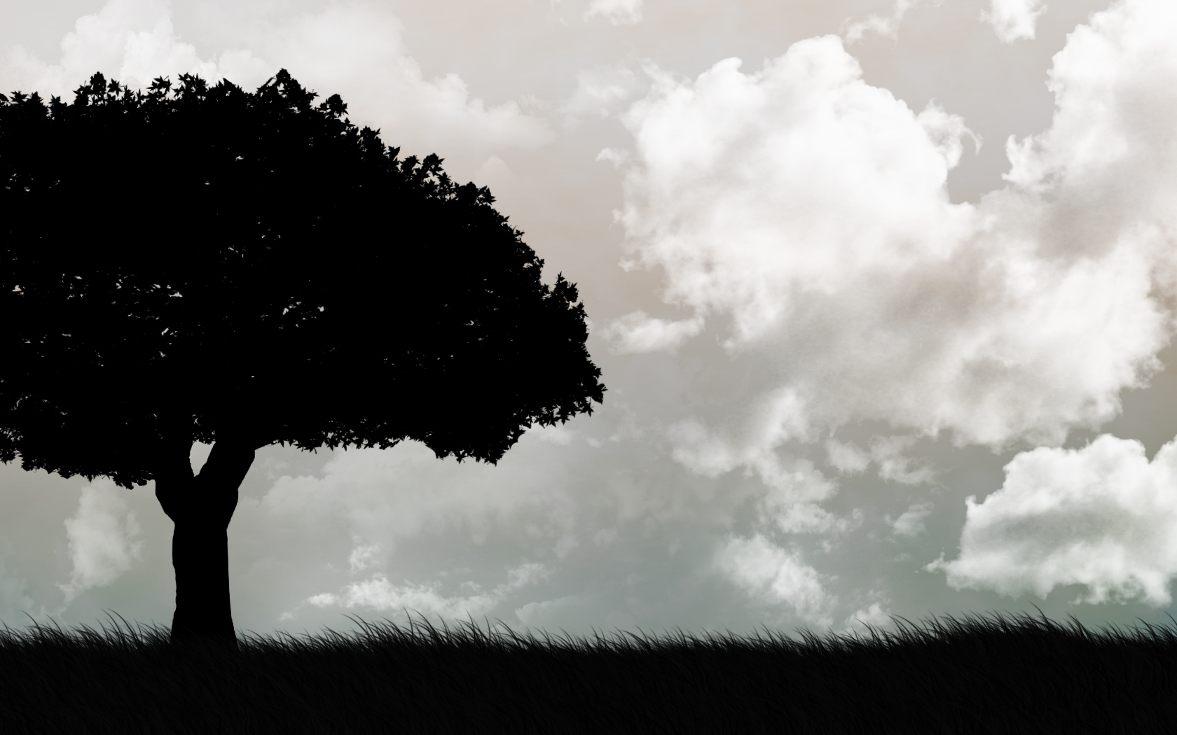 Tree Black and White HD Background Wallpapers 4253 - Amazing