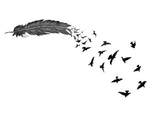 Tumblr Backgrounds Black And White Birds | Latest Laptop Wallpaper