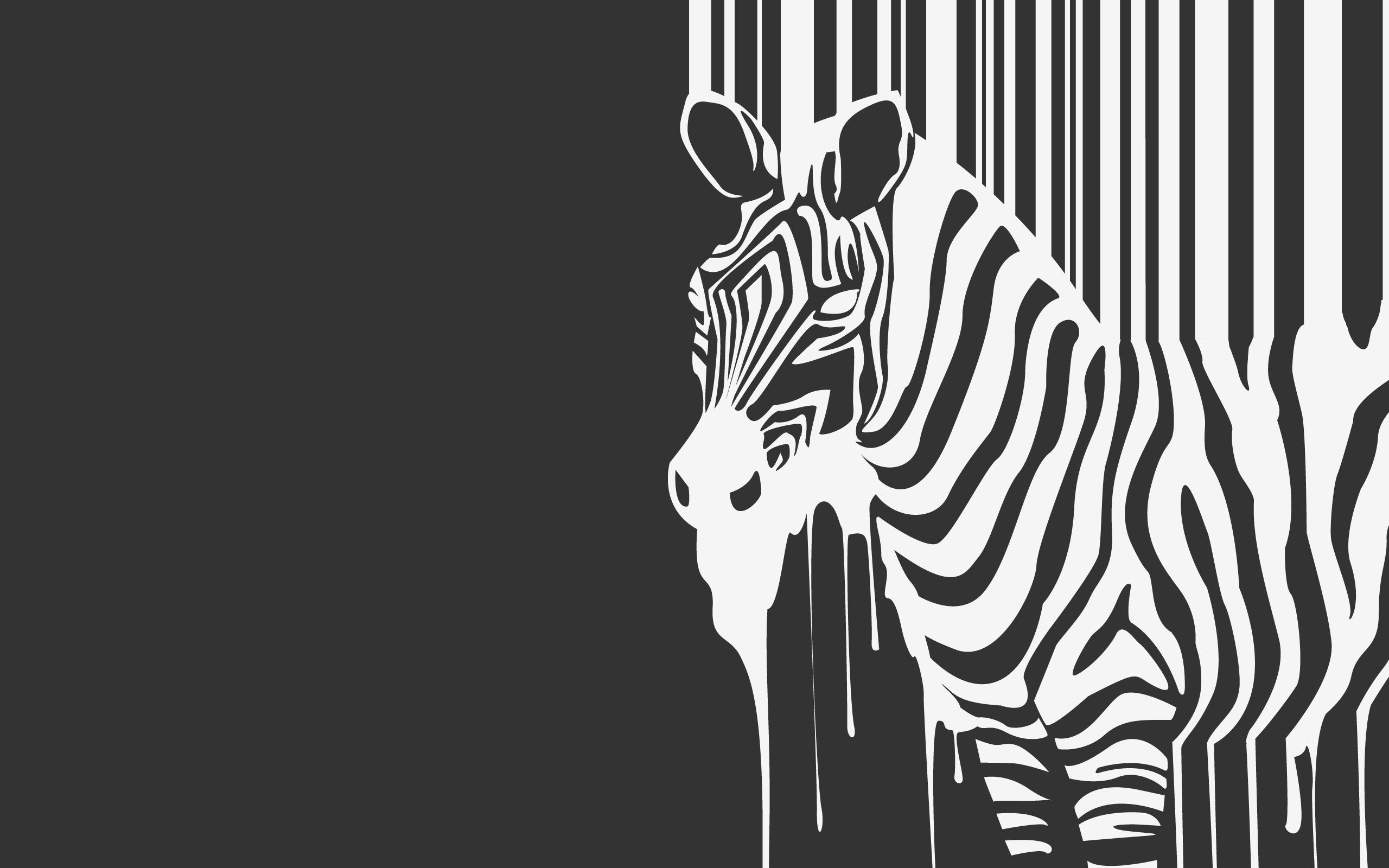 Zebra Wallpaper HD