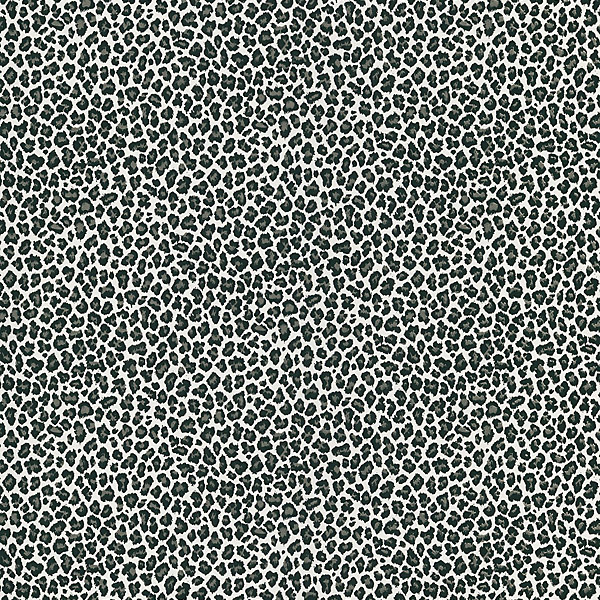 405-49437 Black Animal Print - Cheetah - Brewster Wallpaper