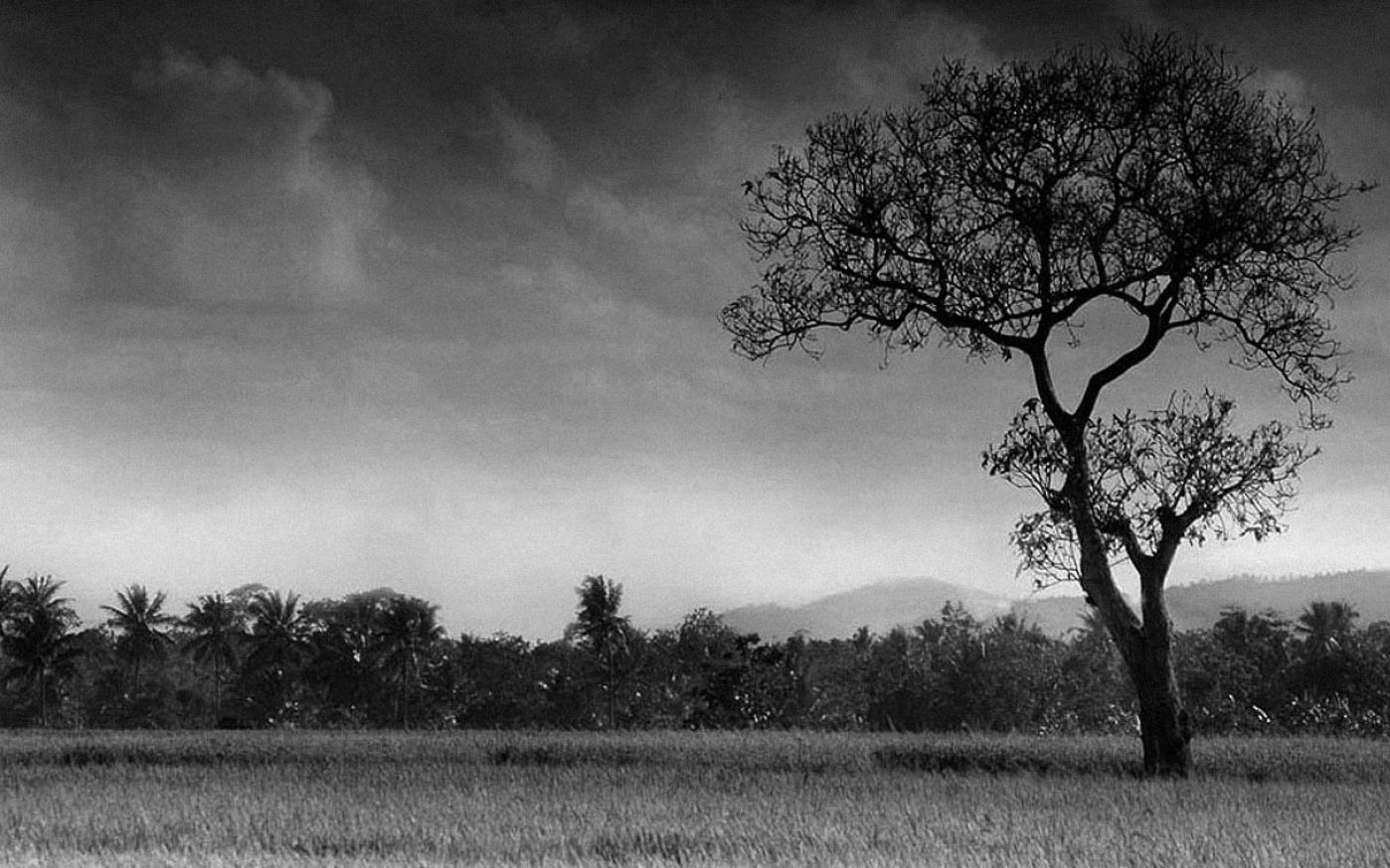 Black And White Desktop Backgrounds - WallpaperSafari
